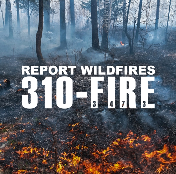 How to Report a Wildfire