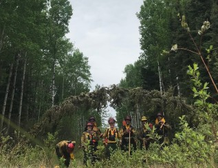 Firefighters in the Field: Back IntoFirefighting