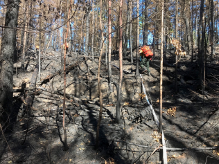 Firefighters in the Field: Highs and Lows at Bull FrogLake