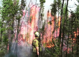 Firefighters in the Field – A Flap ofWildfires