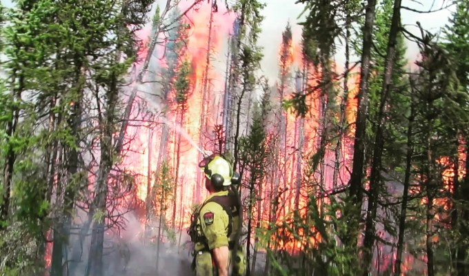 Firefighters in the Field – A Flap of Wildfires